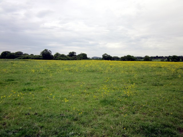 Footpath to Tilston