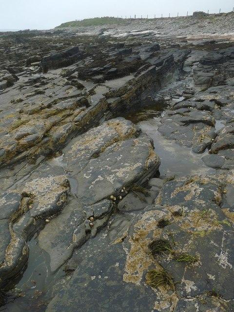 Rockpool below Newark, Sanday, Orkney