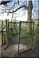 TQ5851 : Deer Fence, Hoad Wood by N Chadwick