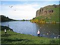 NT2873 : Feeding the gulls, Dunsaple Loch in evening sunshine by Robin Stott