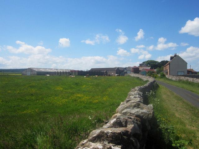 Farm buildings at Fenham