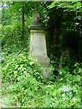 TQ3386 : Memorial to children who died as infants - Abney Park Cemetery by Marathon