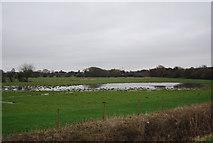 TL4311 : Localised flooding near Parndon by N Chadwick