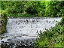 SJ8382 : River Bollin, Weir at Quarry Bank Mill by David Dixon