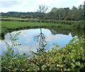 SO3105 : Reflection on a pond, Goytre by Jaggery