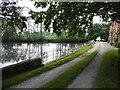 SJ5874 : Acton Mill Pool by John Topping