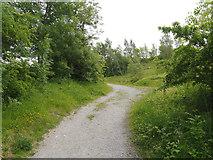 SK3455 : Footpath at Old Glory by David Dixon