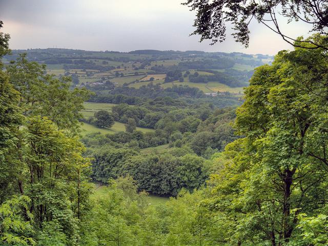 Derwent Valley View