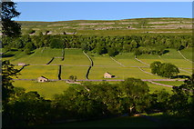 SD9771 : Wharfedale south of Kettlewell by David Martin