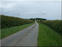 TF2684 : Minor road heading east  by JThomas