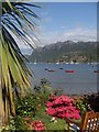 NG8033 : Plockton palm tree and seaside garden by Andrew Hill
