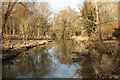 SK9238 : River Witham by Richard Croft