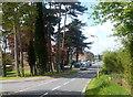 SP9227 : Shenley Hill Road by Des Blenkinsopp