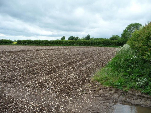 Corner of a recently-ploughed chalky field