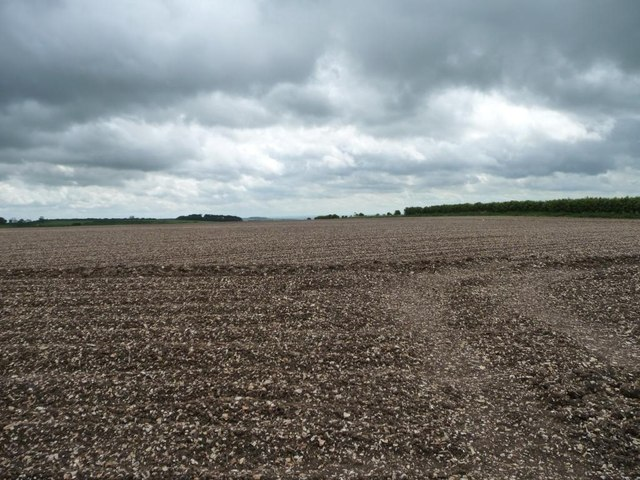 Large chalky ploughed field