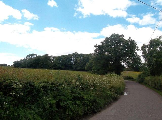 Edlaston Lane