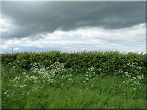 SE8557 : Weather front above Huggate Wold [2] by Christine Johnstone