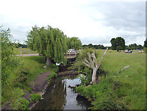 TQ2173 : Richmond Park: Road bridge over Beverley Brook by Dr Neil Clifton