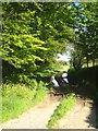 SX1586 : A farm track at Hendawle Farm on the edge of Davidstow Moor by Rod Allday
