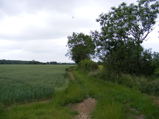 Footpath off Mary's Lane
