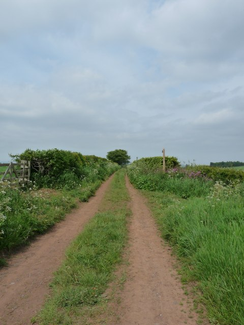 Track from Moorpark to Edingtonhill