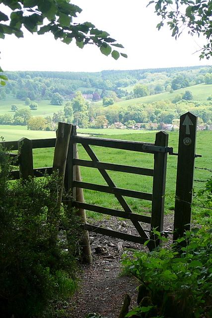 Leaving Park Wood