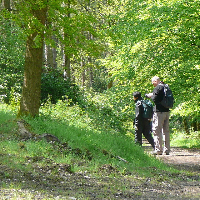 Walkers on the Chiltern Way