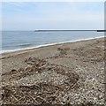 NZ4058 : Beach, Roker by Richard Webb