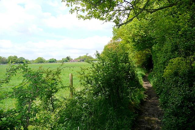 Footpath towards Upper Woodend Farm