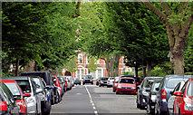 J3372 : Rugby Road, Belfast (2013) by Albert Bridge