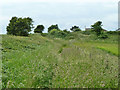 TQ4102 : Footpath to Telscombe Road by Robin Webster