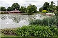 SP9632 : Lake at Woburn Abbey, Bedfordshire by Christine Matthews