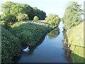 SE9579 : The River Derwent at Brompton Bridge by Barbara Carr