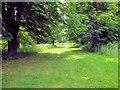 TQ4845 : Hever Lake Walk by Paul Gillett