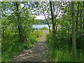 SO1210 : Bryn Bach Park Lake by Robin Drayton