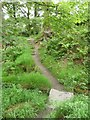 SD9926 : Footbridge on Hebden Royd Footpath 45 by Humphrey Bolton