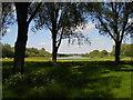 TL1697 : Rowing lake, Thorpe Meadows, Peterborough by Paul Bryan