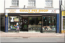 ST0207 : Cullompton: 31 Fore Street by Martin Bodman