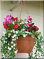 NZ4211 : A hanging basket at the Golden Jubilee, Yarn by Ian S