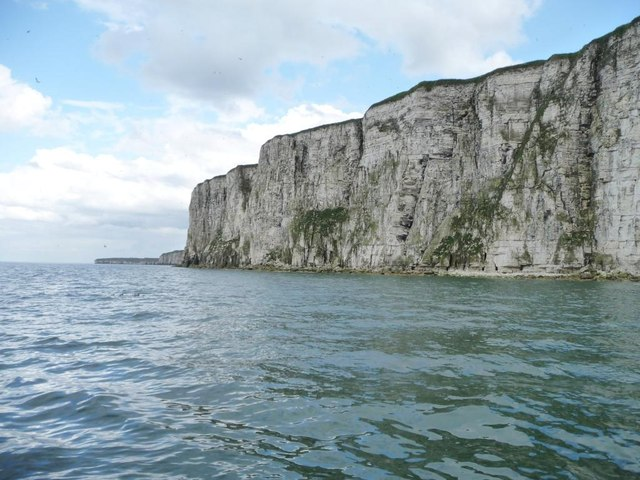 Bempton Cliffs, between Scale and Wandale Nabs