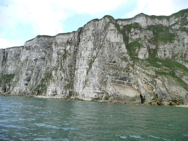 Dipping strata, Bempton Cliffs, from the north