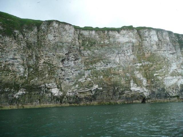 Bempton Cliffs, west of Scale Nab