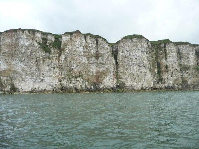 Bempton Cliffs, near Crab Rocks