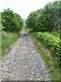 NY8567 : Byway near Fell Cottage by Oliver Dixon