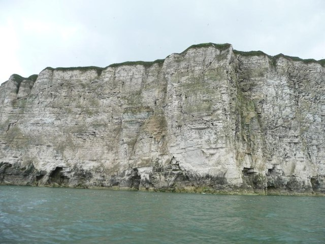 Bartlett Nab, Bempton Cliffs