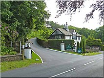 SD4095 : Driveway to Linthwaite House Hotel by Oliver Dixon
