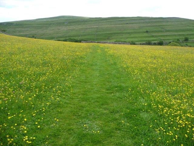 Footpath to Cray, at Hay Close