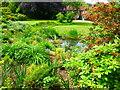 TQ9950 : Beech Court Gardens, Challock by pam fray