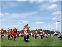 TQ7668 : The Band of The Princess of Wales's Royal Regiment  by David Anstiss