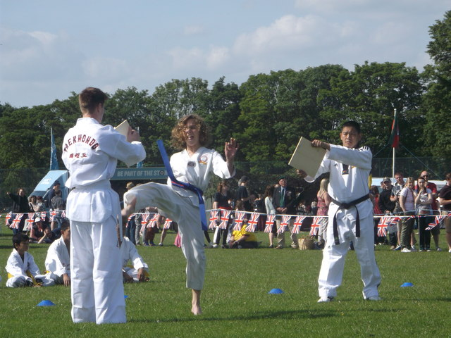 Taekondo display, Armed Forces Day